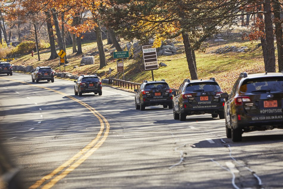 Subaru призывает игнорировать Черную Пятницу и провести день с любимыми питомцами